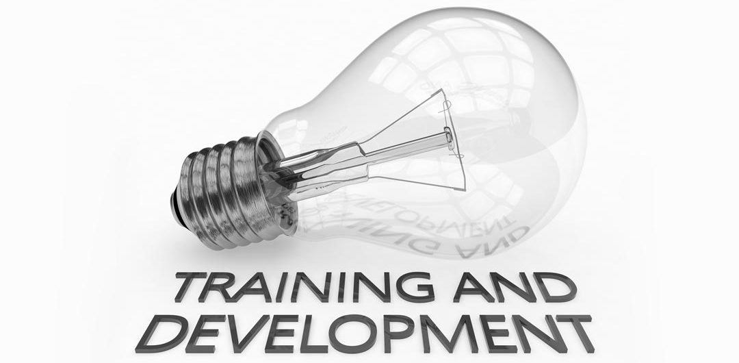 Fistral Training & Development